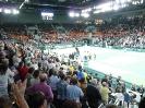 Davis Cup 2013 - Deutschland-Brasilien